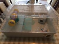 Hamster Cage and Accessories for sale