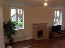 Skilled Painter and Decorator London
