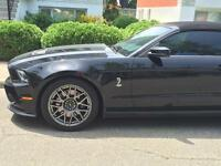 Mustang Shelby 2012