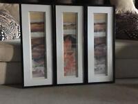3 framed canvas