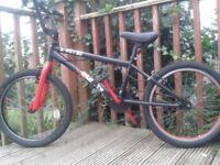 X-Rated BMX, 360 Giro Stunt Bike, Multi Spoke Wheels, Reflectors, Padded seat ,20in Wheels