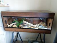 Wooden vivarium with heating and lighting