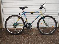 raleigh mantis mountain bike 1990s