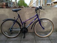 Raleigh Oasis 10 speed bike