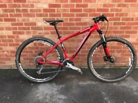 Specialized Rockhopper 29 medium (17.5)