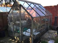Greenhouse 6'x 8' FREE - dismantle and collect and it's yours . Redbridge area
