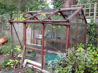 Alton Cedar Greenhouse fully glazed with staging and concrete base blocks needs some repairs