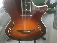 Crafter sa- tmvs hybrid guitar