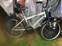 Retro style bikes