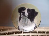 "Danbury Mint Royal Worcester (Yours Faithfully) Boarder collie 7""plate"