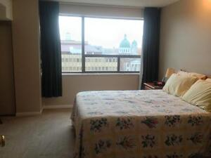 FURNISHED, INCLUSIVE DT CONDO! AMAZING LOCATION! 909-165 Ontario Kingston Kingston Area image 9