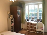 Bright Double Room to rent near Clapham North - Female only