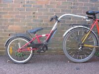 Children's tag-along trailer bike (suitable for ages 4-9)