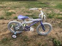 "Probike Glitter Girls 16"" Wheel Bike. Serviced, Free Local Delivery"
