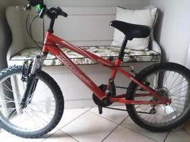 "Child's 16"" Red Bike"
