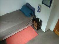 Cozy single room in Victoria Park area