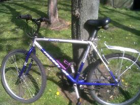 Men's Silver Fox bicycle
