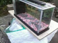 FISH TANK AQUARIUM - FLUVAL SPEC 19L AQUARIUM