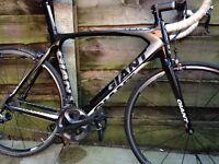 Giant tcr full carbon road bike