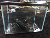 19l fish tanks