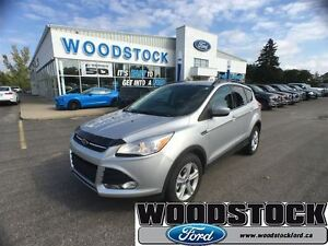 2014 Ford Escape SE, AWD, 201 PACKAGE