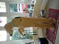 Scoobydoo Onesie