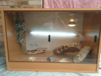 Large vivarium tank, heat lamp, UV lamp, logs, food and water bowls. Great starter for any reptile.