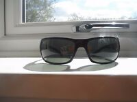 Ray Ban Polarized (Great Lenses)