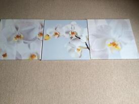 Three screen printed orchid prints on canvass