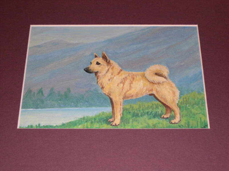 ANTIQUE NORWEGIAN BUHUND DOG OIL PAINTING ON CANVAS BY D. JOHNSON NAMED DOG