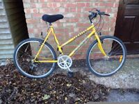 """Tall Ladies Mountain Bike For Sale. 21"""" Frame. Fully Serviced & Ready To Ride. Guaranteed."""