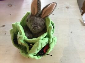 The Puppet Company bunny in lettuce with bugs!