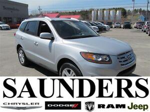 2010 Hyundai Santa Fe -