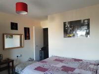 Ridiculously cheap and beautiful room to rent by Manor House Station Zone 2