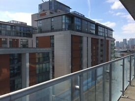 Luxury one bedroom apartment fully furnished in Royal Victoria with Partial River, Canary Wharf view