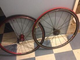 Two wheels, red Alex rim front, Mavic Aksium 11 speed
