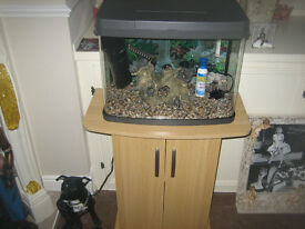 LOVERLY FISH TANK WITH BEECH UNIT EXCELLENT CONDITION