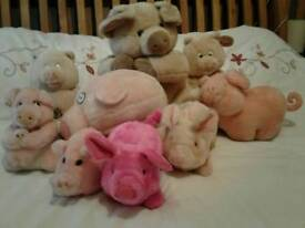 Soft toy pigs
