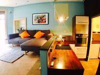 Luxury 1 Bedroom Flat to Rent Shawlands