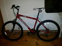 "Muddyfox Impel 26"" Adult Mountain Bike"