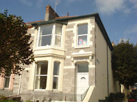 Spacious studio flat on Sailsbury Road, St Judes, Plymouth