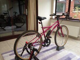 Ladies/Youths Apollo Mountain Bike