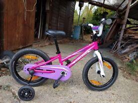 """Girls Specialized Hotrock 12"""" Bike"""