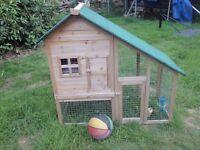 Rabbit hutch / chicken coop / hamster house
