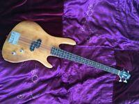 Washburn XB-100 Pro Bass Guitar