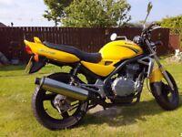 Kawasaki ER5, 500cc twin.