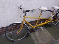 Vintage tandem bike not raleigh chopper/grifter