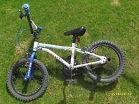 kids stunt king bike