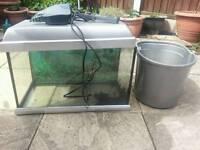 aquarium/fish tank