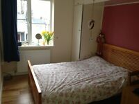 Spacious room for 1 in Roehampton. 10min from Putney, quiet house, calm location